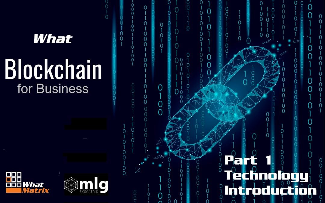 "New ""What Blockchain for Business?"" Comparison & Technology Introduction"
